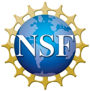 NSF_4-Color_bitmap_Logo (1)